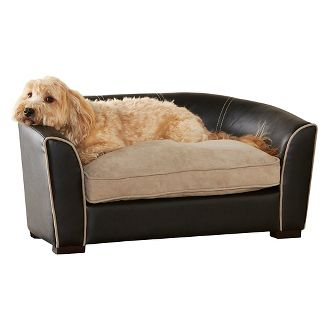 Various types and varieties Of Dog Beds