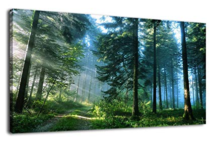 Reasons Behind The Popularity Of Canvas Prints