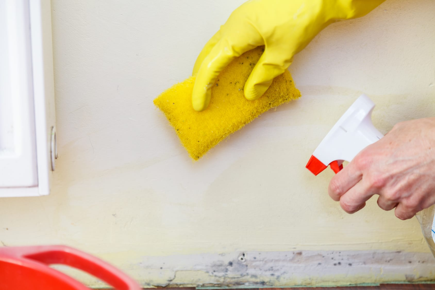 Here Are The Benefits You Can Get From Water Damage Company Flood Cleanup